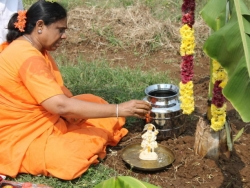 Sankranthi 2015  (4)