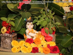 sri-krishna-jayanthi-celebrations-2013-003