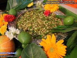 ugadhi-celebrations-11-4-2012-001