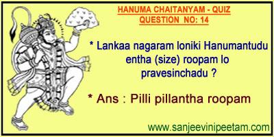 HANUMA 001 (14)