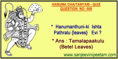 HANUMA 001 (9)