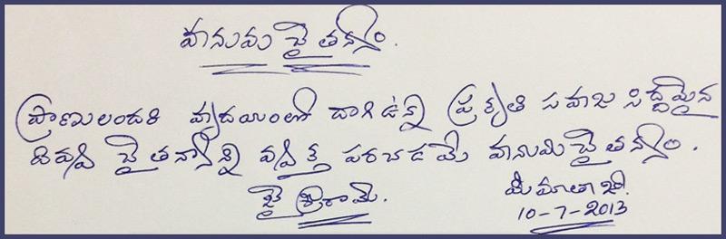 Hanuma-Chaithanyam-11-7-2013-Telugu