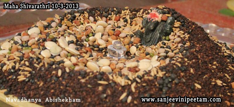 maha-shivarathri-10-3-2013-012